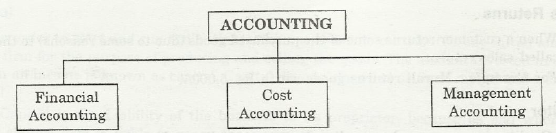 Introduction to accounting and branches of accounting