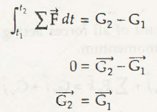 """Conservation of Linear Momentum 1"""" = C"""