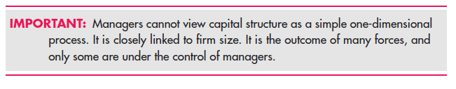 Capital Structure and Firm Scale 3