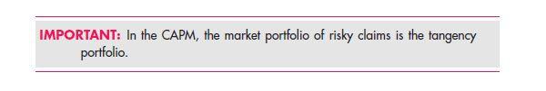 Adding a Risk-Free Asset 87