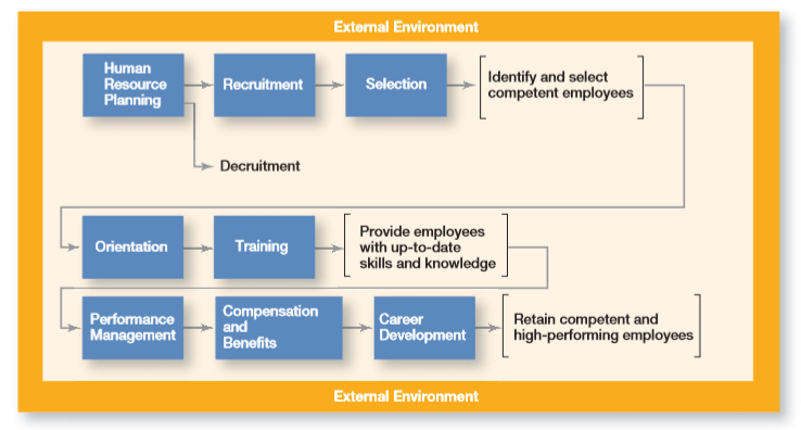 The HRM Process 3