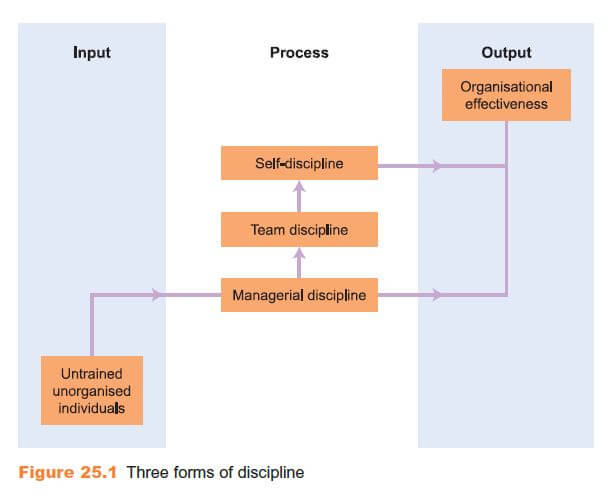 What Do We Mean by Discipline? 19