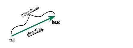 Vector Summation homework answers